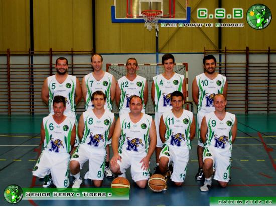 Tigers 2012-13